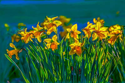 Photograph - Daffodils Spring 2016 Artistic by Leif Sohlman