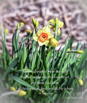 Photograph - Daffodils With Quote by Kerri Farley