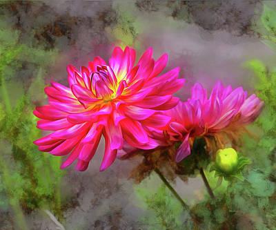 Dahlia Beauty Original by Mac Titmus