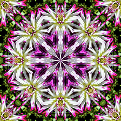 Digital Art - Dahlia Flower Circle by Smilin Eyes  Treasuress