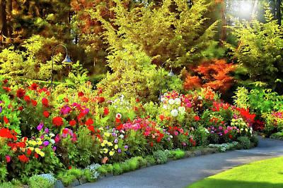 Photograph - Dahlia Garden 6 by Lawrence Christopher