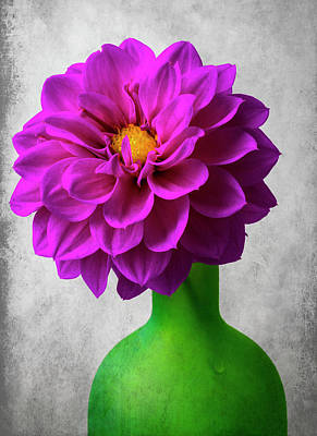 Photograph - Dahlia In Green Vase by Garry Gay
