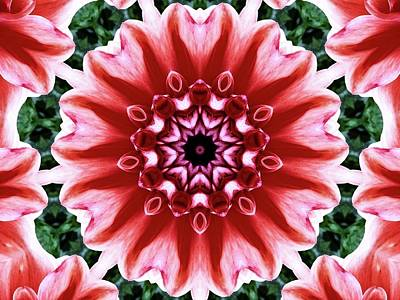 Photograph - Dahlia Manipulation 2 by Karen Stahlros