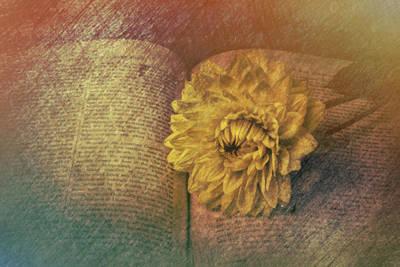 Photograph - Dahlia On Open Book by Garry Gay