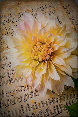 Photograph - Dahlia On Sheet Music by Garry Gay