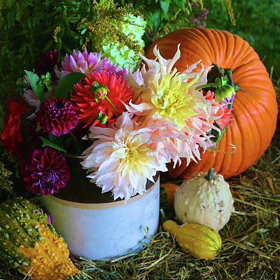 Photograph - Dahlia Pumpkin Still Life by Polly Castor