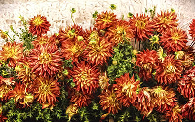 Photograph - Dahlia Wall by Wes and Dotty Weber