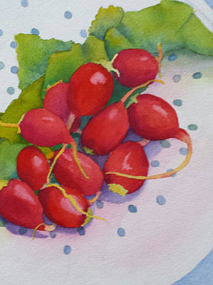 Painting - Dahling, You Look Radishing by Judy Mercer