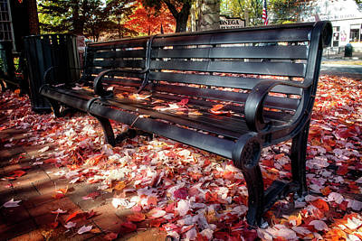 Autumn Photograph - Dahlonega Bench by Greg Mimbs