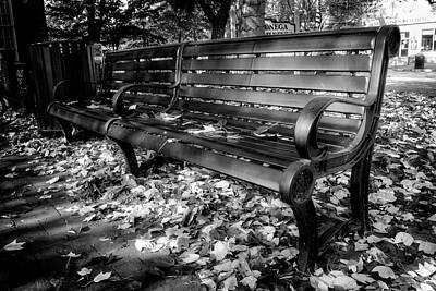 Autumn Photograph - Dahlonega Bench In Fall Black And White by Greg Mimbs