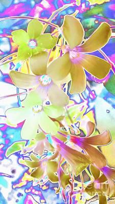 Digital Art - Dainty Bloosoms by Rachel Hannah