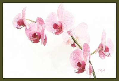 Shower Digital Art - Dainty Orchids by Marsha Heiken