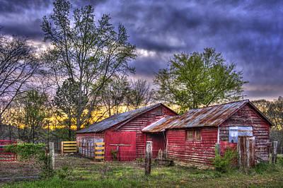 Photograph - Dairy Cow Dreams  by Reid Callaway