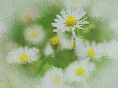 Photograph - Daisies - 365-140 by Inge Riis McDonald