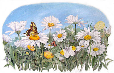Painting - Daisies And Butterflies by Maureen Carter