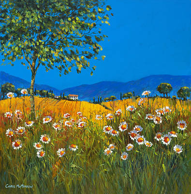 Daisies In Provence Original by Chris Mc Morrow