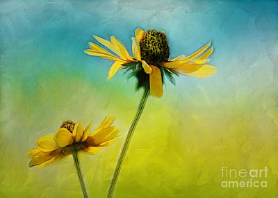 Photograph - Dancing In The Sun by Judi Bagwell