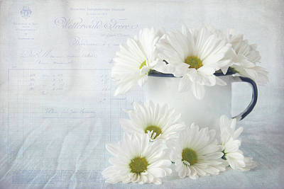 Photograph - Daisies Still Life by Cindi Ressler