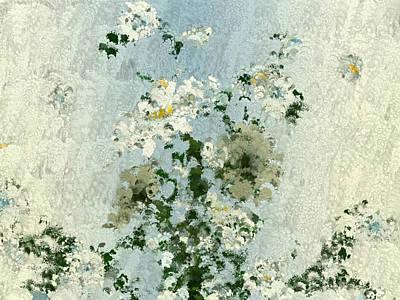 Daisies Through A Rain Streaked Window Art Print by Karen Steinbock