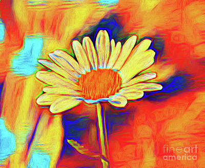 Photograph - Daisy 16918 by Ray Shrewsberry