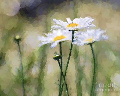 Photograph - Daisy Abstract 1 by Kerri Farley