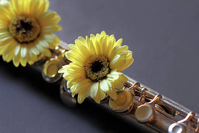 Photograph - Daisy And Flute by Angela Murdock