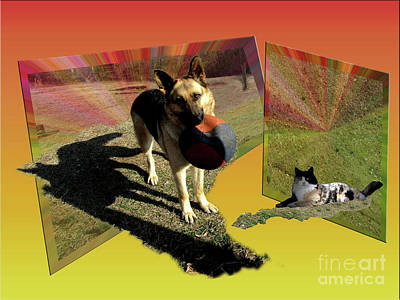 German Shepard Digital Art - Daisy And Kit-cat by Donna Brown