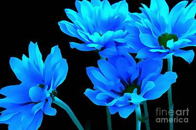 Blue Flowers Photograph - Daisy Blues by Krissy Katsimbras