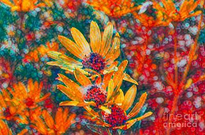 Photograph - Daisy Color Pop by Luther Fine Art