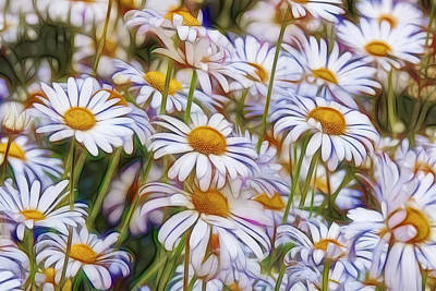 Photograph - Daisy Garden by Wes and Dotty Weber