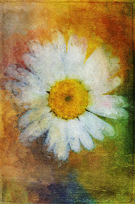 Painting - Daisy In Colors  by Christina VanGinkel