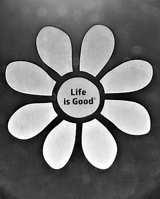 Photograph - Daisy Life Is Good B W by Rob Hans
