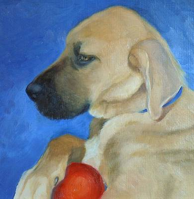 Great Dane Oil Painting - Daisy by Mary Buergin