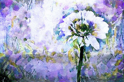 Mixed Media - Daisy May by Susan Maxwell Schmidt