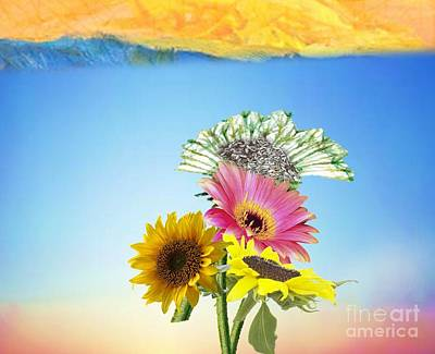 Painting - Daisy Sunshine by Belinda Threeths