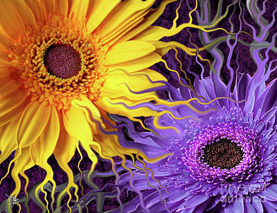 Floral Digital Art Painting - Daisy Yin Daisy Yang by Christopher Beikmann