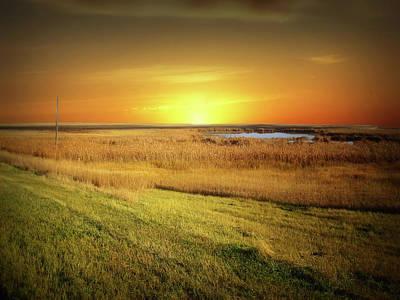 Photograph - Dakota Field 12 by William Tanata