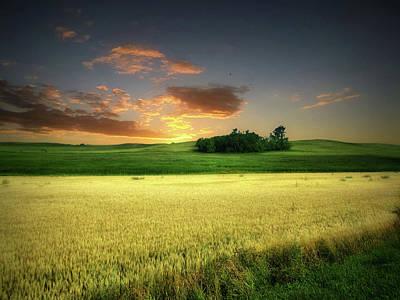 Photograph - Dakota Field 9 by William Tanata