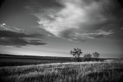 Photograph - Dakota Grassland Black And White by Steven Bateson