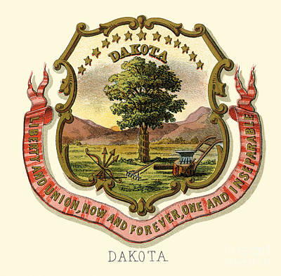 Dakota Painting - Dakota State Arms Of The Union by Celestial Images