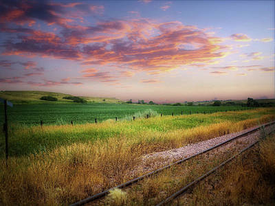 Photograph - Dakota Tracks by William Tanata