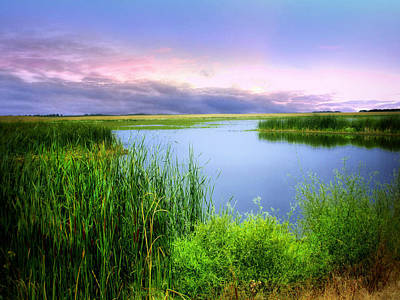 Photograph - Dakota Wetlands 11 by William Tanata