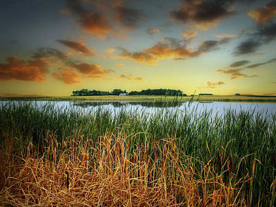 Photograph - Dakota Wetlands 16 by William Tanata