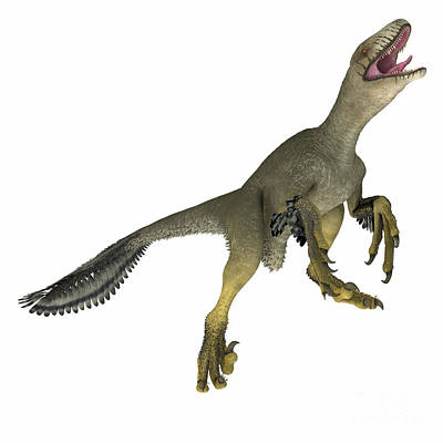 Revolutionary War Art - Dakotaraptor Dinosaur on White by Corey Ford