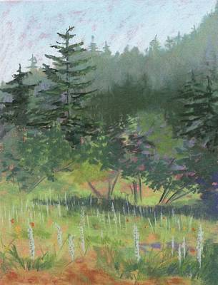Painting - Dale Creek Meadow by Janet Biondi