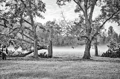 Photograph - Dale - Foggy Morning by Scott Hansen