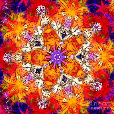 Photograph - Kaleidoscope by Judi Bagwell