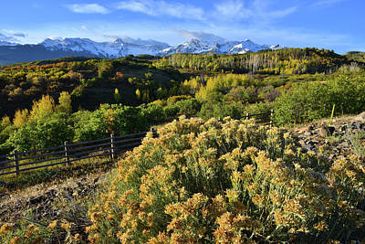 Photograph - Dallas Divide Fall Morning by Ray Mathis