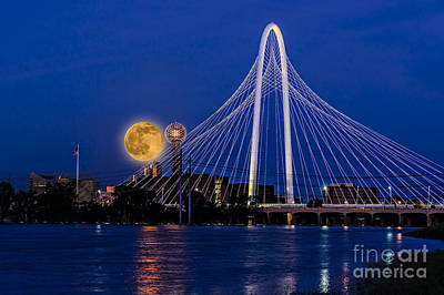 Photograph - Dallas Strawberry Moon At Twilght by Tamyra Ayles