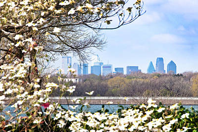 Dallas Through The Dogwood Flowers Print by Tamyra Ayles